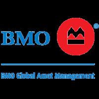 bmo_global_800x800-032819